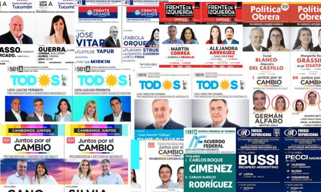 Internas en distritos clave: qué dicen las últimas encuestas en Tucumán